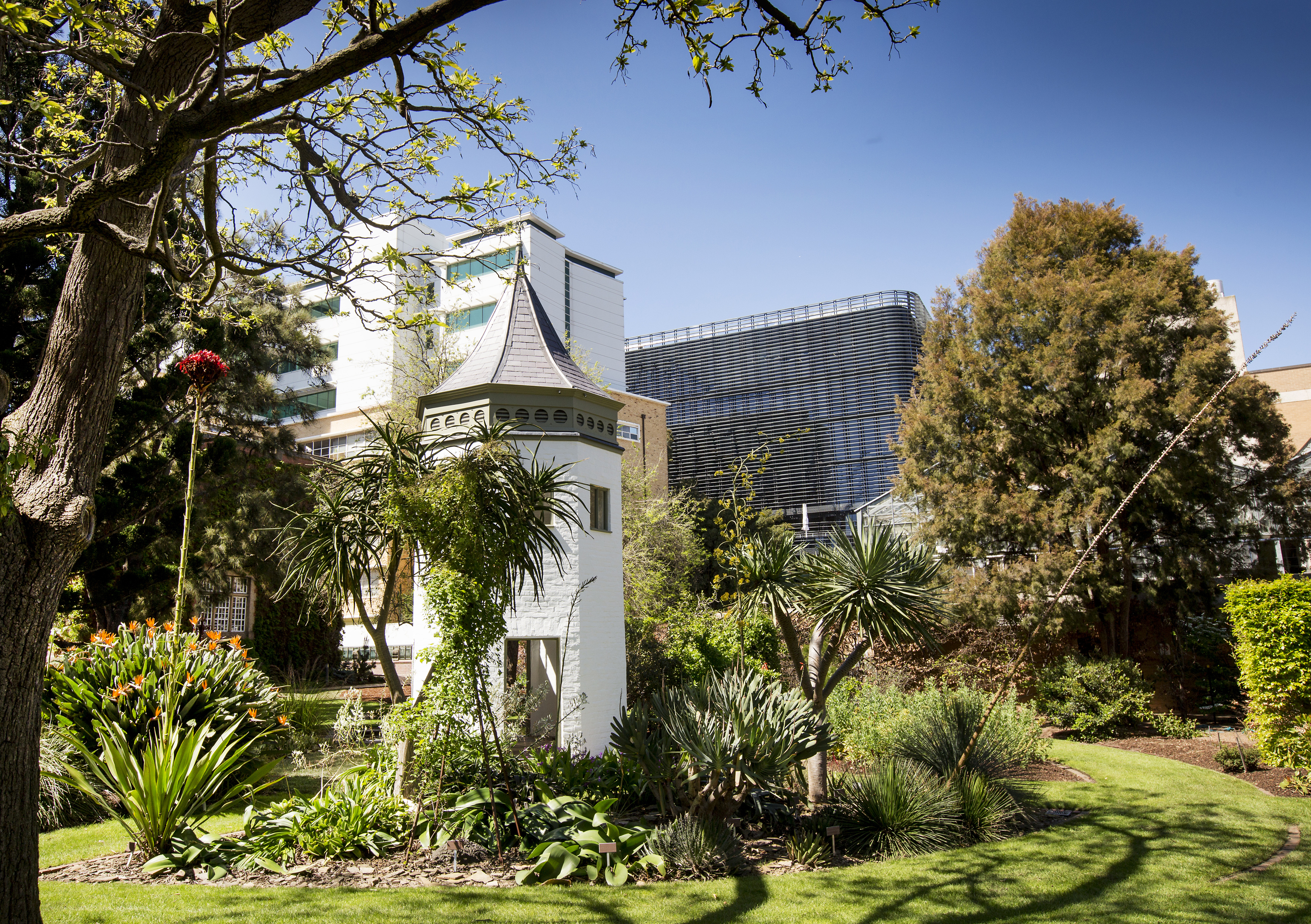 The white turret of the system garden stands out against a backdrop of the University's new Arts building