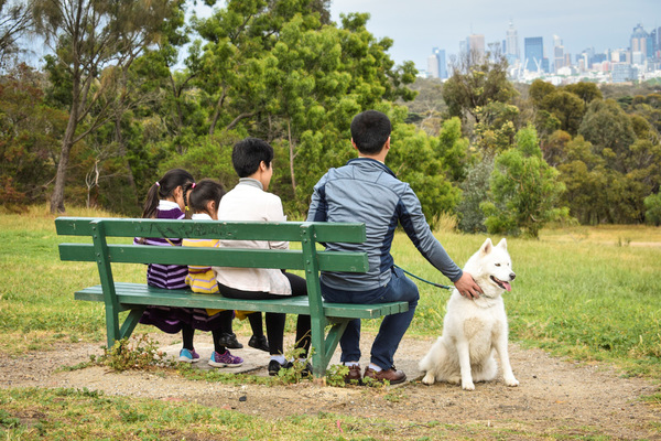 Park with Melbourne skyline