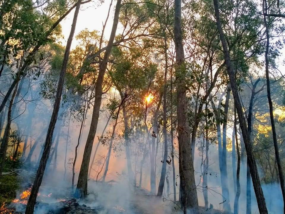 hume region planned burn