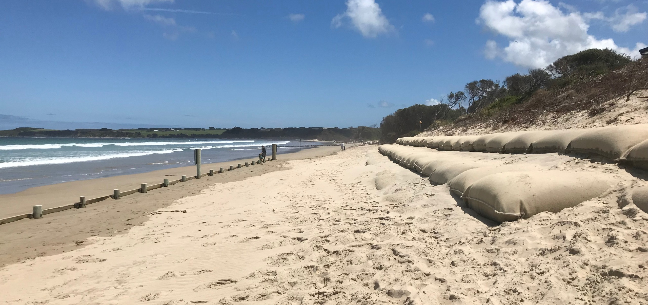 Geotextile container wall and sand fencing at Inverloch Surf Lifesaving Club