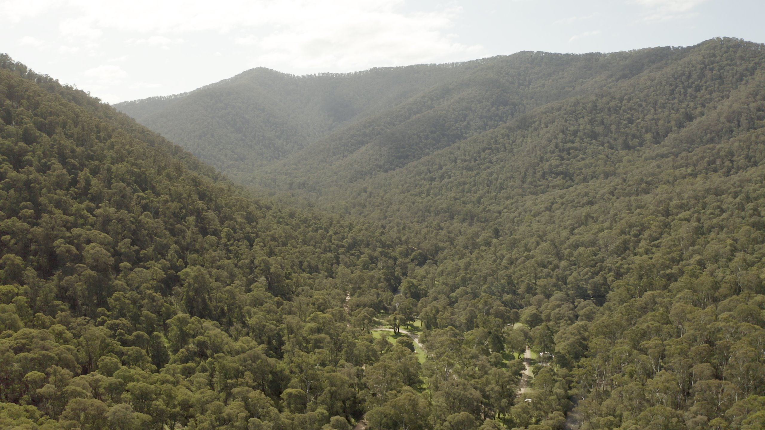 Aerial image of the Buckland River winding through forested hills