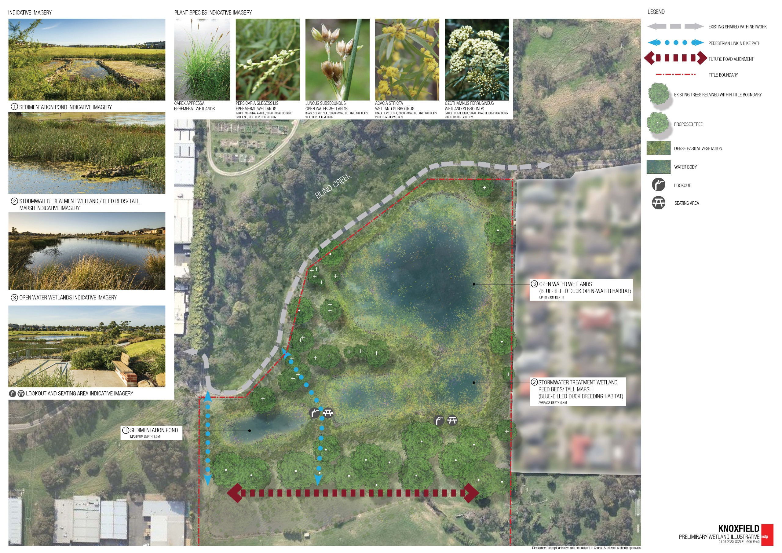 The image shows an illustration of the new wetland. The new wetland has three waterbodies which include a sedimentation pond, a stormwater treatment wetland with reed beds and tall marsh which is good for Blue-billed Duck breeding and an open-water wetlan