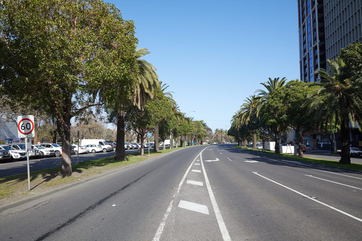 Existing view of Albert Road boulevard trees looking south from Kings Way
