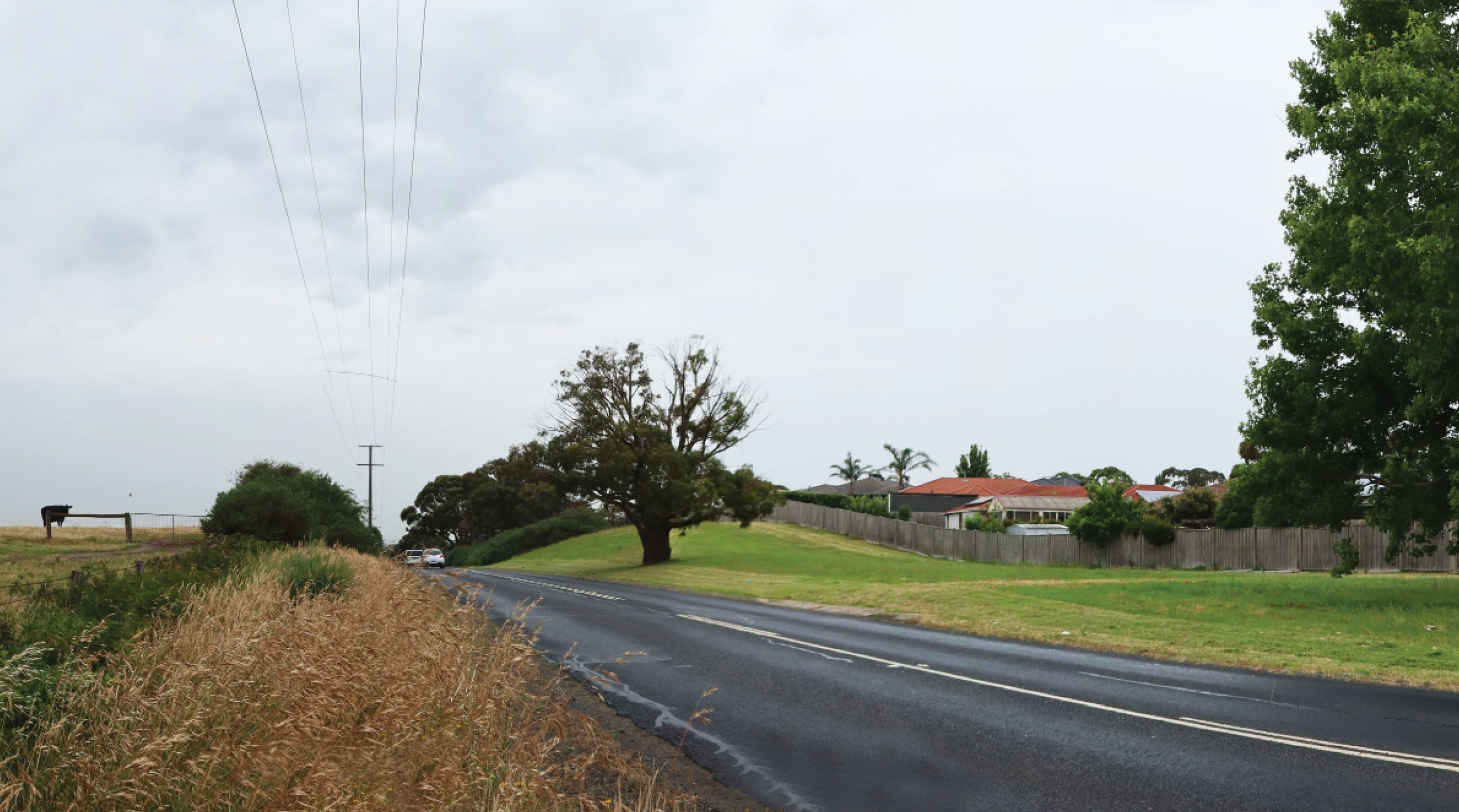 Existing Hall Road from the road reserve
