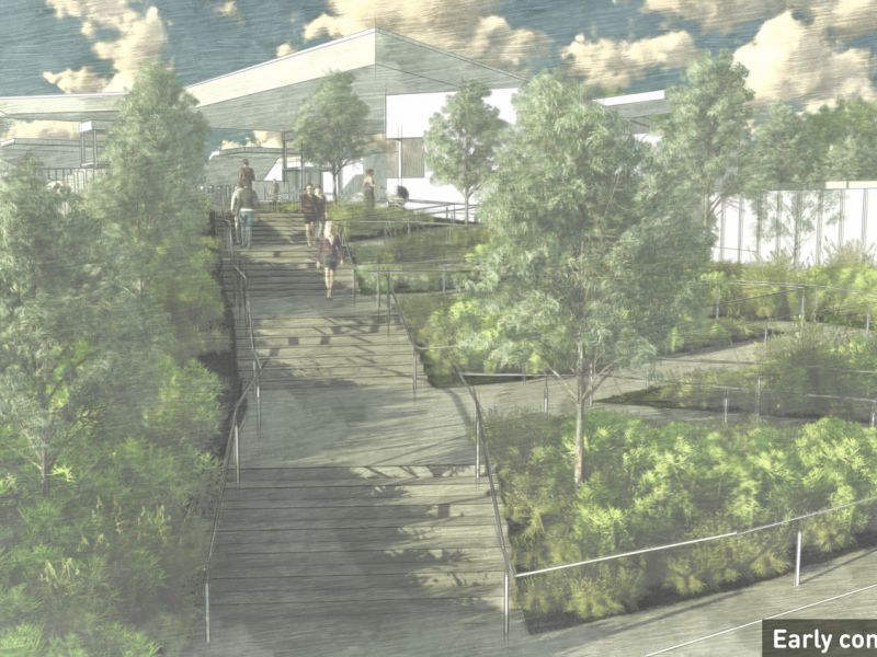 Artist impression showing the northern station entrance, Surrey Hills, featuring steps and ramps to the entry, canopy trees and shrubs.