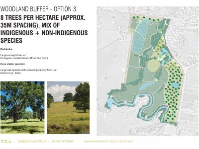 Haining Farm - Woodland Buffer Option 3