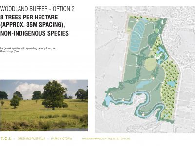 Haining Farm - Woodland Buffer Option 2