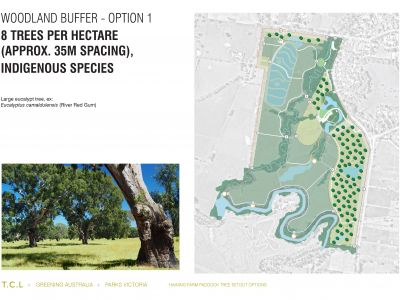 Haining Farm - Woodland Buffer Option 1