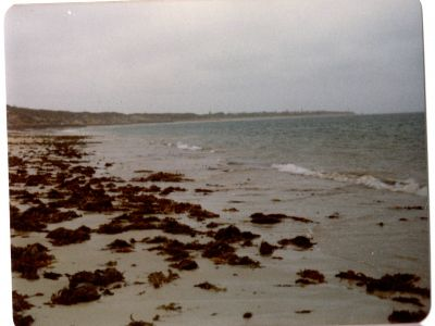 ​View towards Queenscliff - 1976
