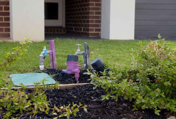 Purple coloured Class A meter in home garden