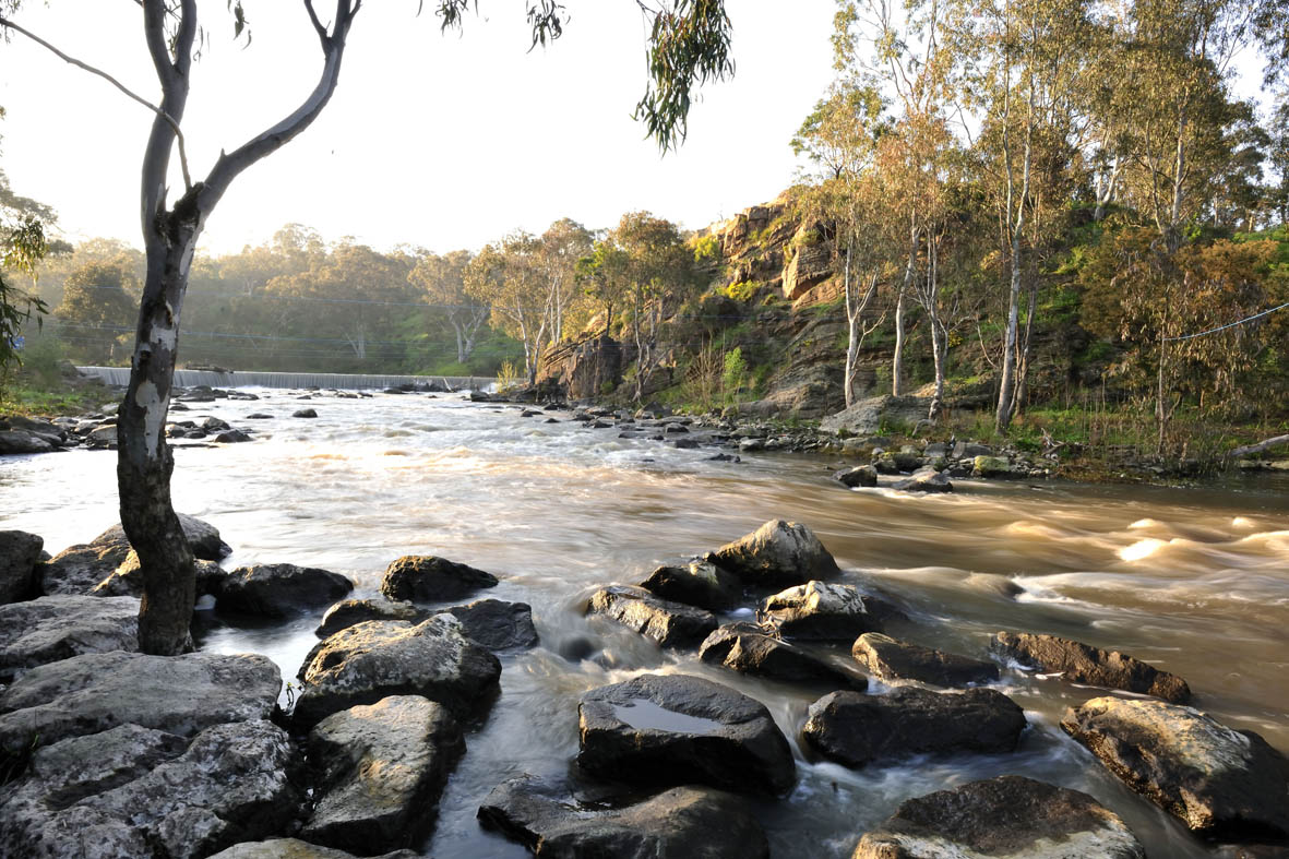 The Yarra river surrounded by rocks and trees