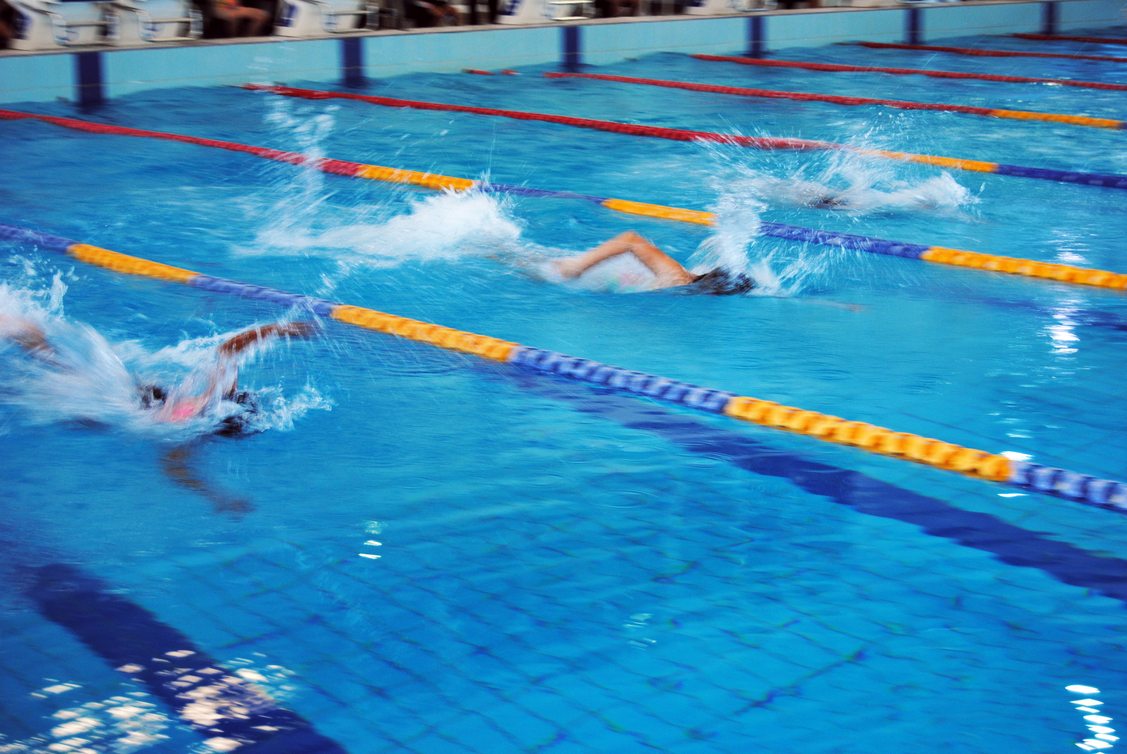 igs-primary-school-swimming-carnival-pool