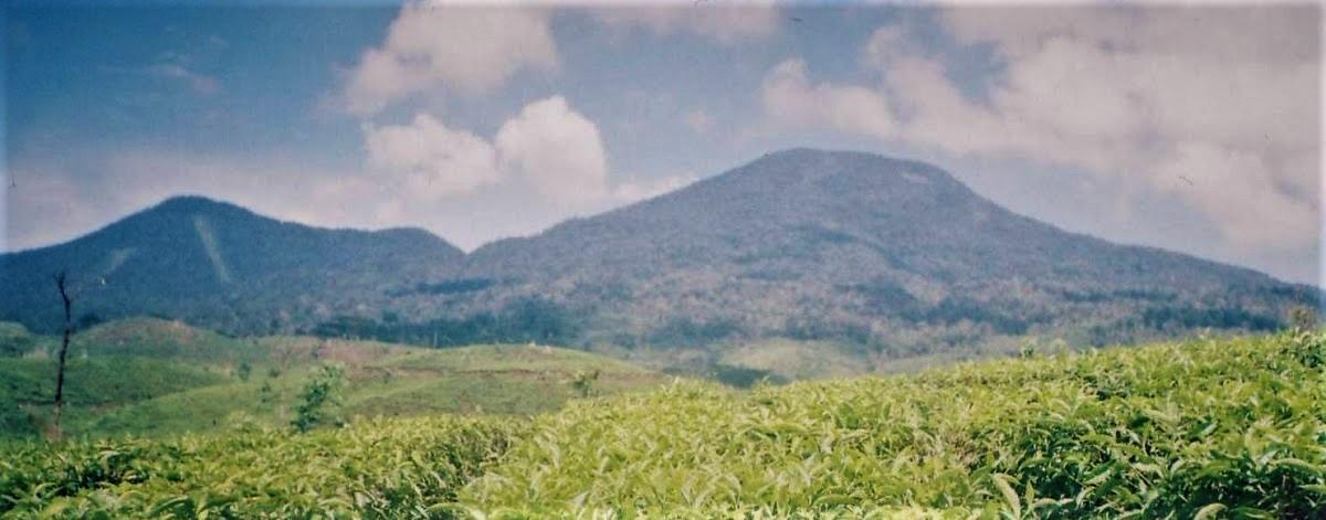Bukit Daun Volcano