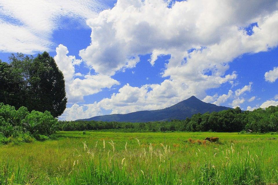 Gunung Tiong Kandang