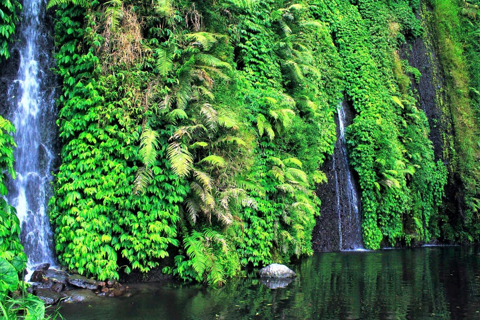 Teleng Ngrayudan Waterfall