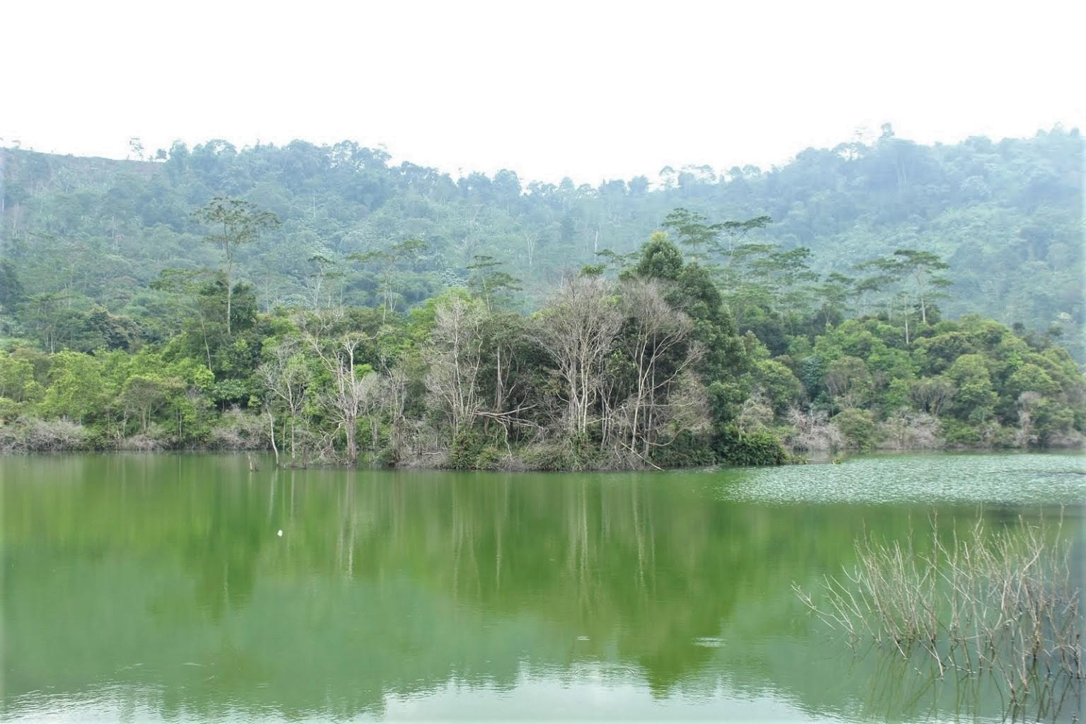 Danau Hijau
