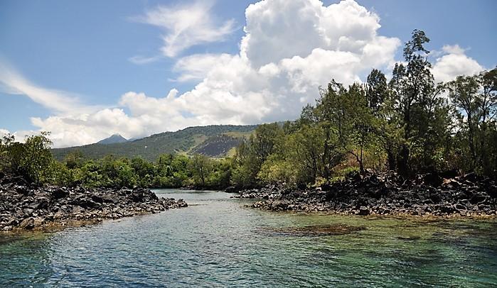 Tangkoko Batuangus Nature Reserve