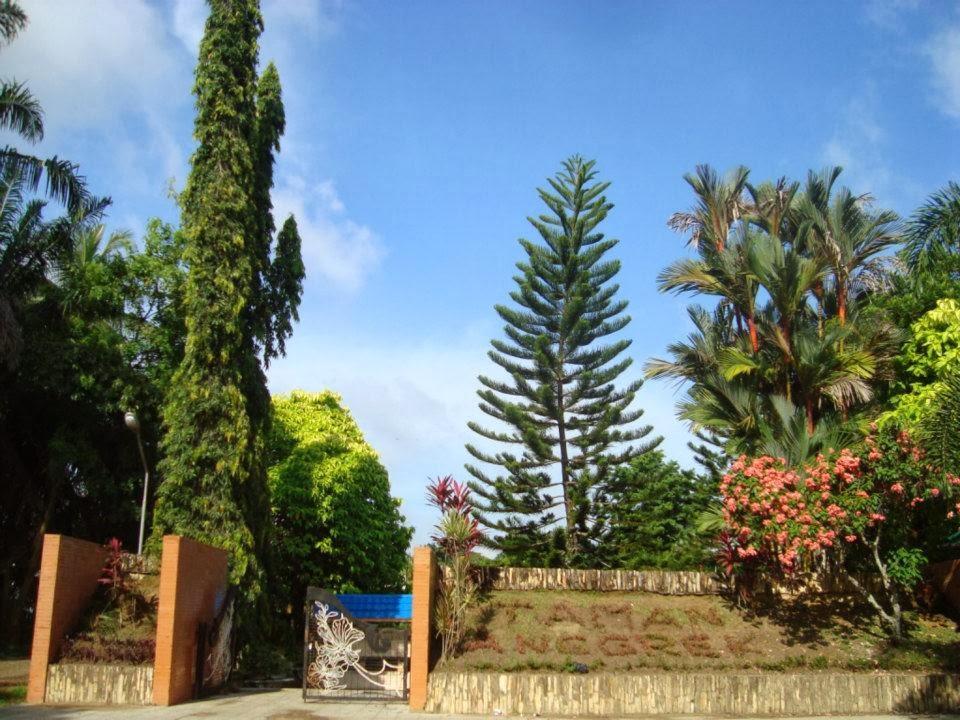 Taman Hutan Kota Mayang