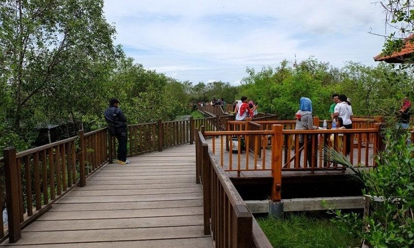 Wisata Mangrove Nguling Pasuruan