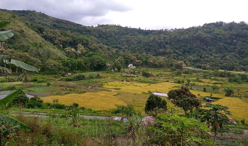 Waturaka Village