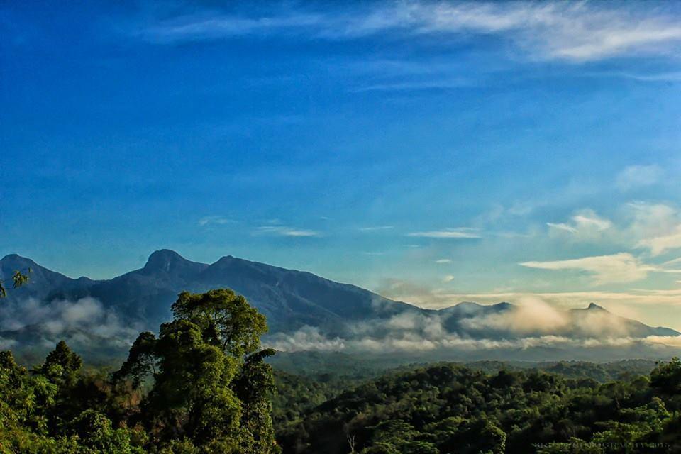 Bukit Jamur