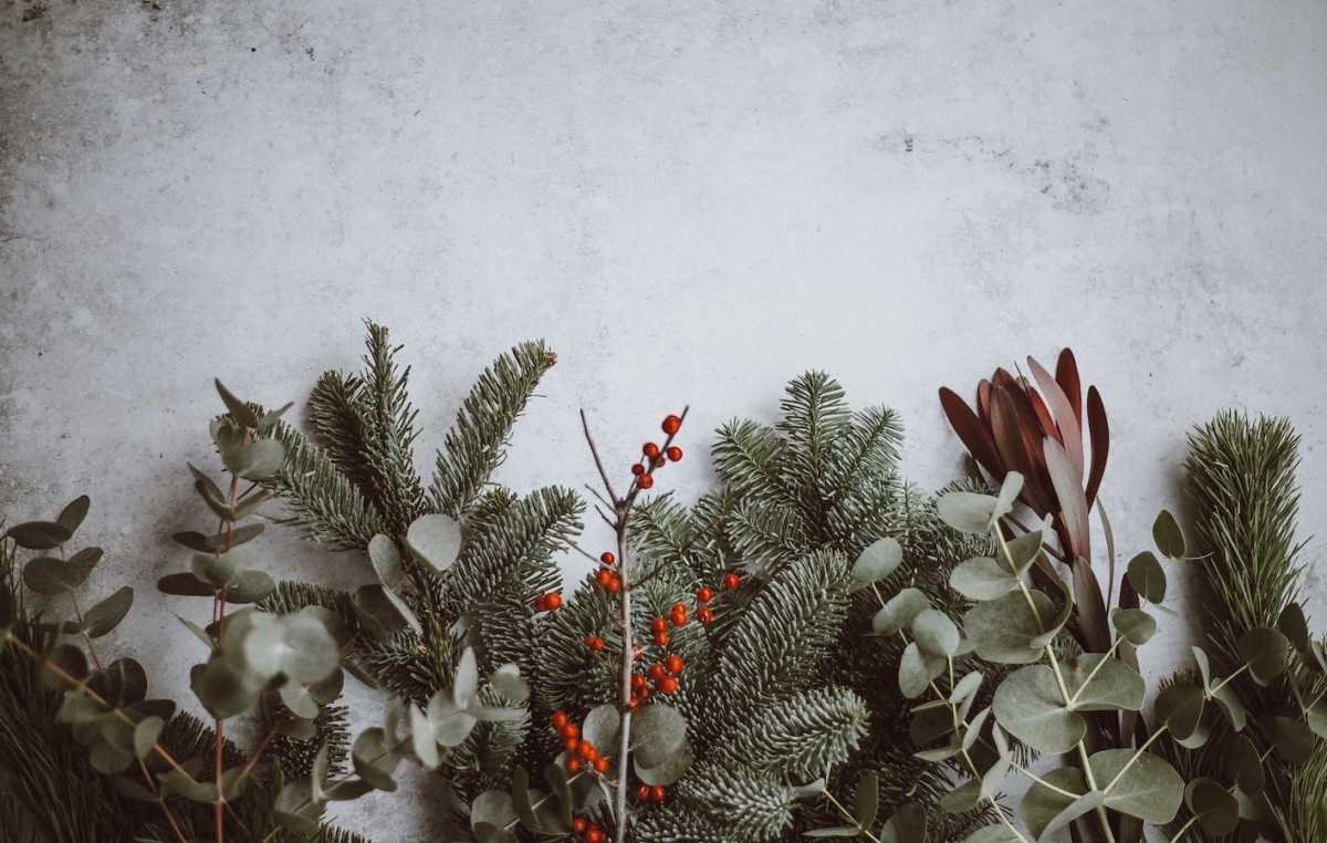 tips for taking care of yourself this christmas