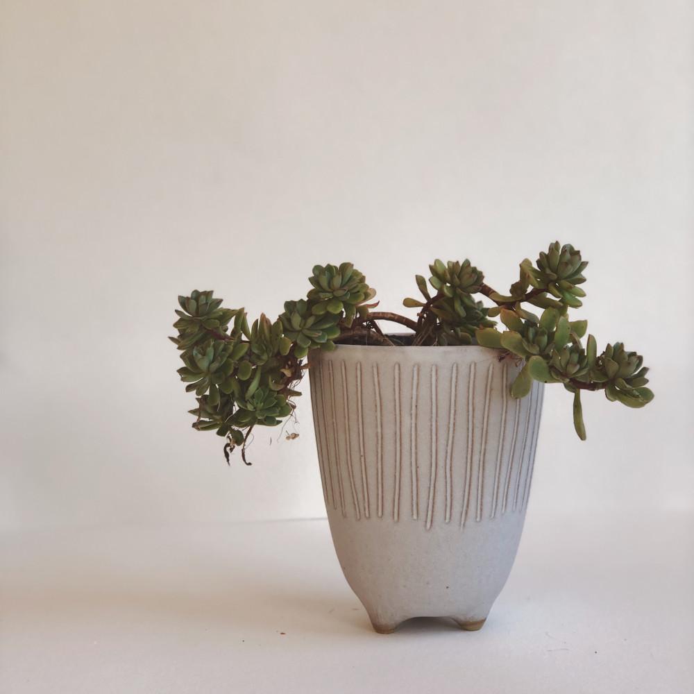 Arcadia Scott Ceramics Image