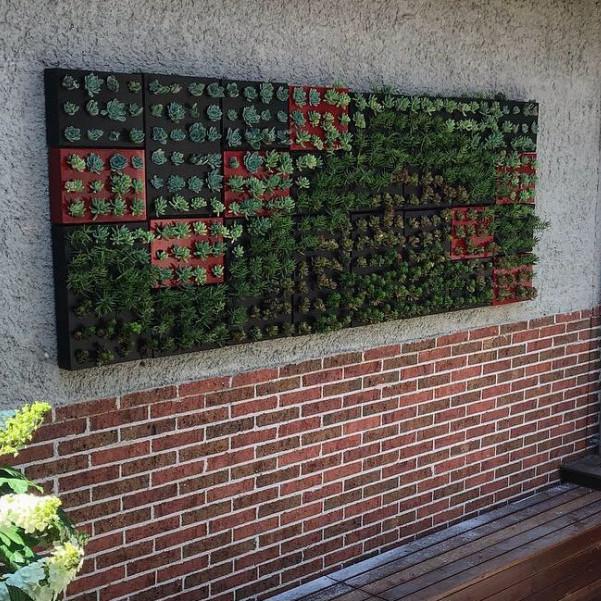 Vertical Walls & Succulent Creations Image