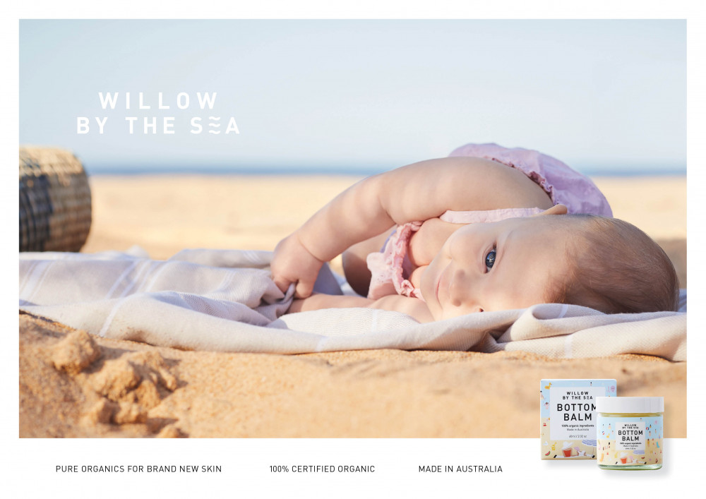 Willow by the Sea Image