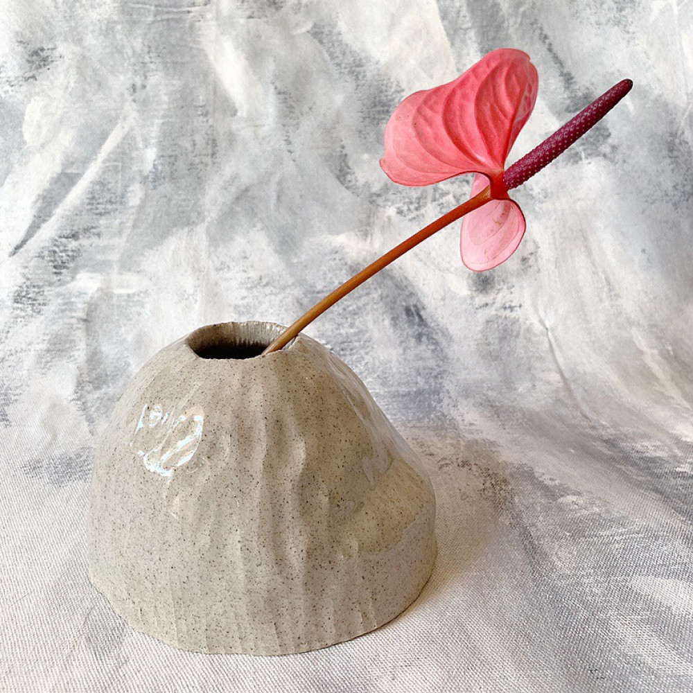 Paxxy&Flora Image