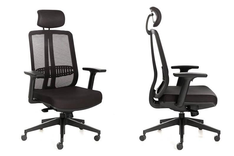 Trellis-Ergonomic-Chair_Soho-Living