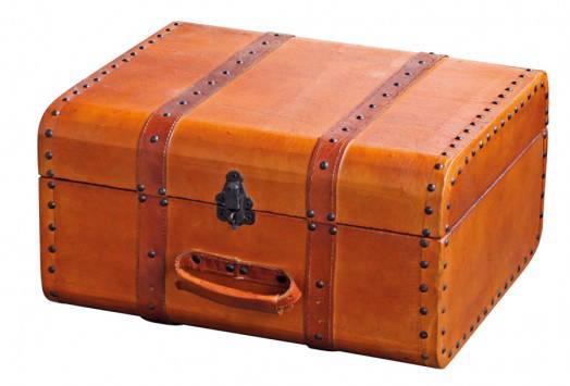 ed_Galanga living_Derek_Suitcase_$319