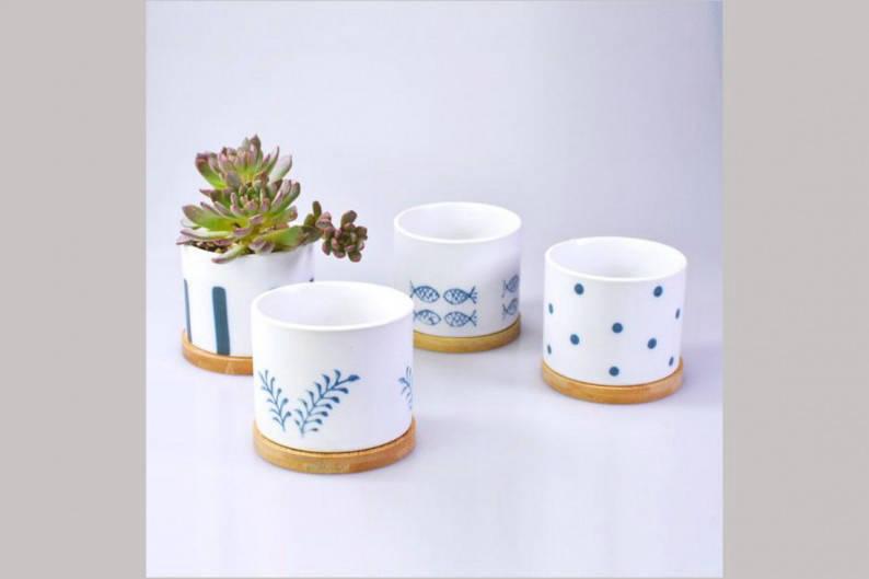 Tumbleweeds_Japanese pot