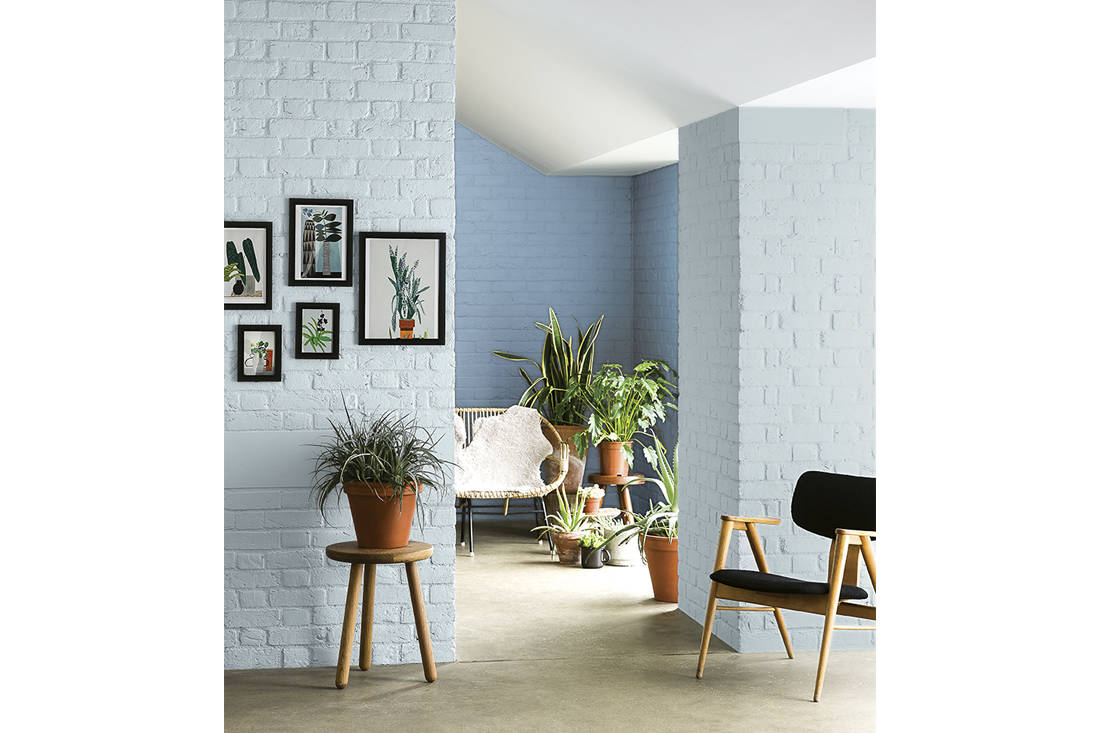 Home Reno: The best types of paints and colours for your