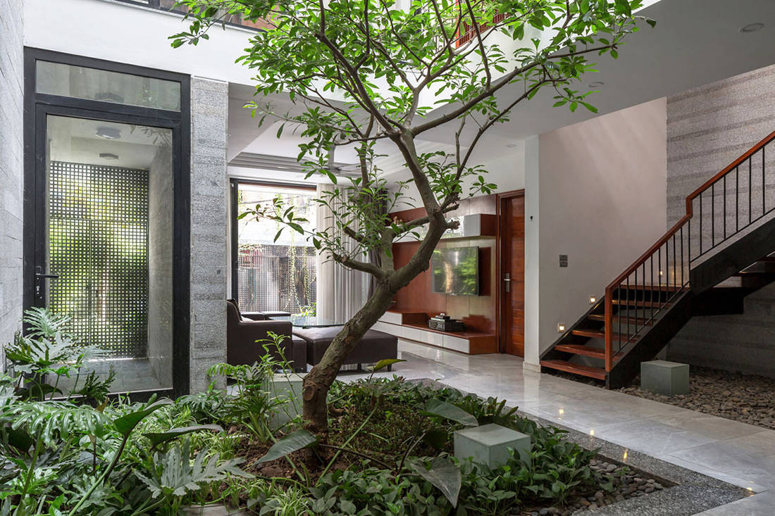 Sustainable home - D House by ARO Studio_18