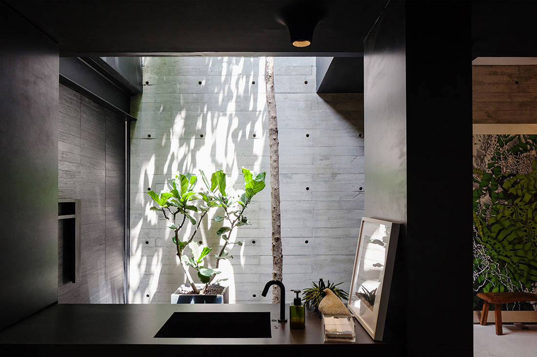 entrance of Open House by Formwerkz Architects embraces nature