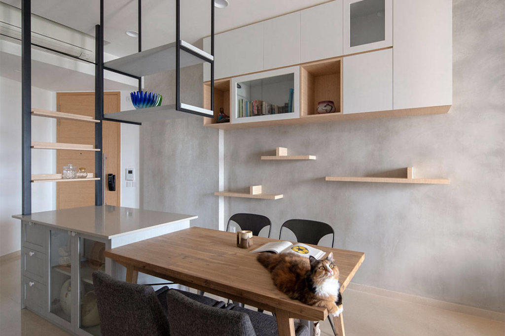 cat-friendly apartment linear space concepts