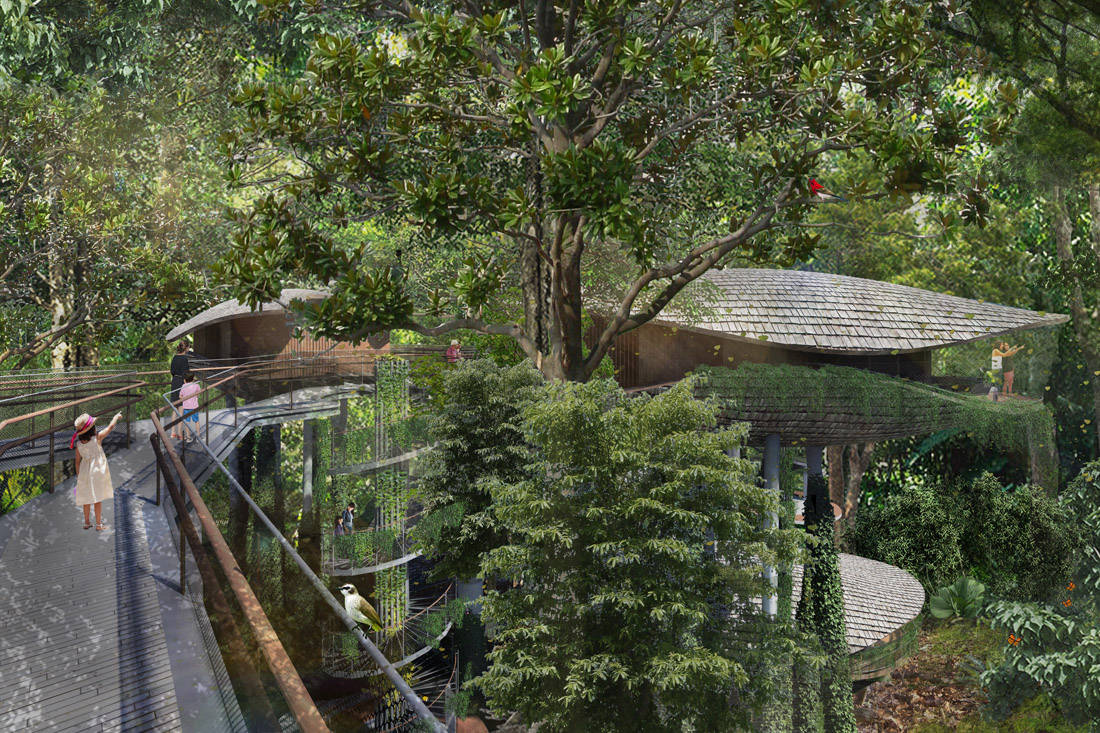 eco-resort in Mandai. Architectural illustration of an elevated walkway at the resort. Image courtesy of Mandai Park Holdings
