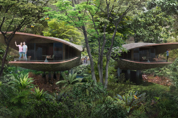 eco-resort in Mandai. Architectural illustration of the treehouses at the resort. Image courtesy of Mandai Park Holdings