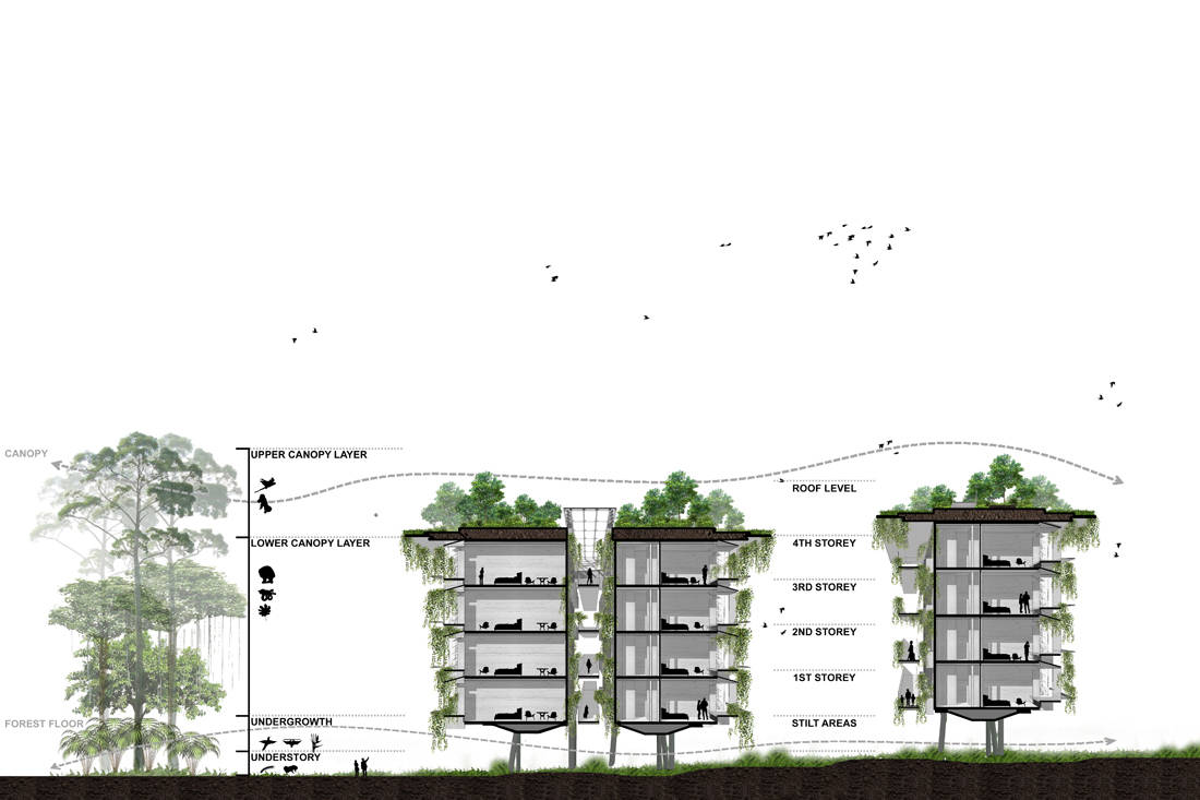 eco-resort in Mandai. Cross section illustration of the resort. Image courtesy of WOW Architects
