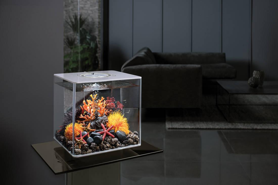 biOrb by Oase aquarium - Cube 30L Main Room Set