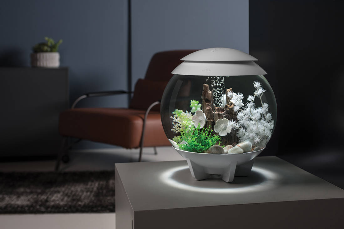 biOrb by Oase aquarium - Halo 15L Main Room Set