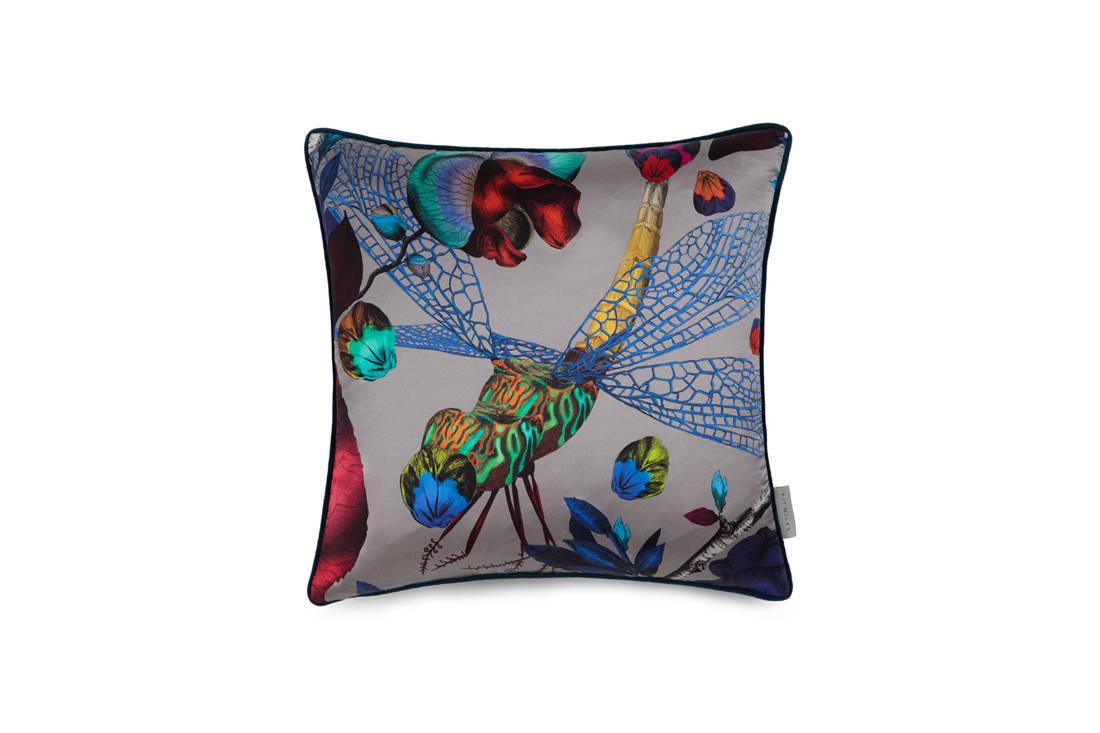 Saturday Indesign prizes - Biophilia dragonfly