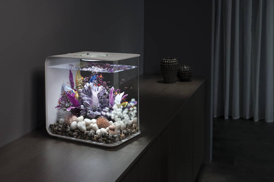 biOrb by Oase aquarium - Flow 30L Main Room Set