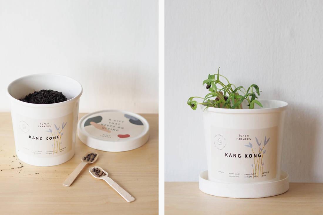 Valentine's Day gift idea - Super Farmers urban farming kit
