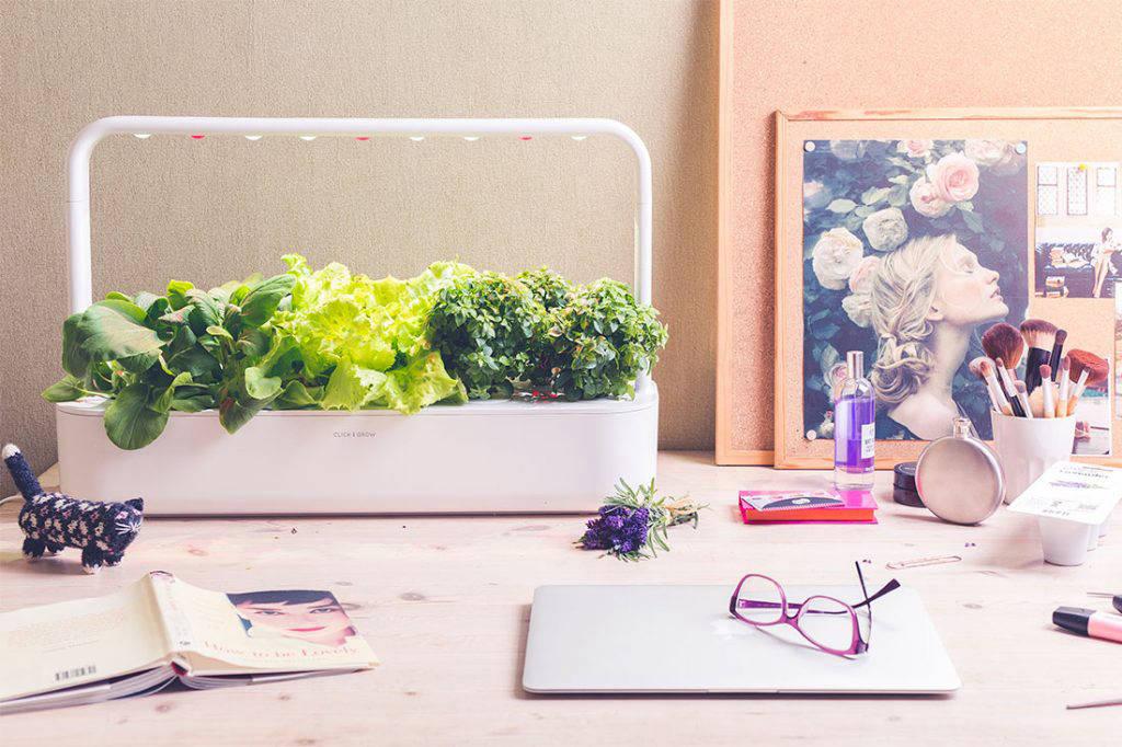 home decor ideas Click and Grow