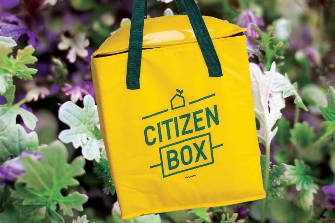 grow your own food - Edible Garden City Citizen Box - urban farming