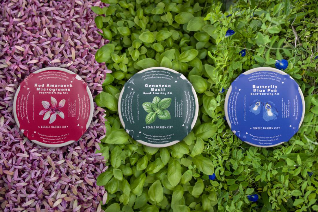 grow your own food - Edible Garden City grow kits - urban farming