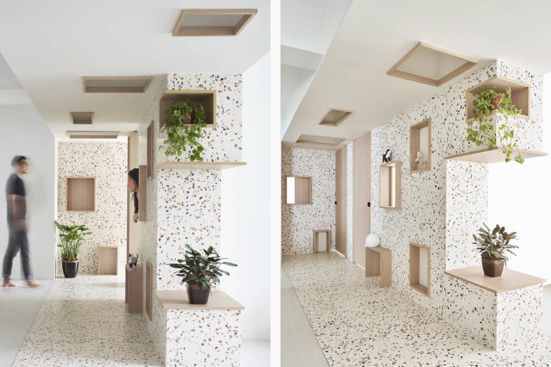 pet friendly interior design by ASOLIDPLAN