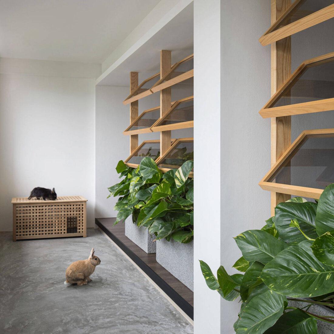 pet friendly interior design by Right Angle Studio